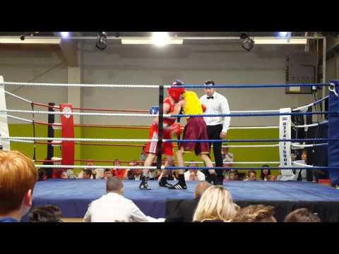 Taylor hamilton shire boxing