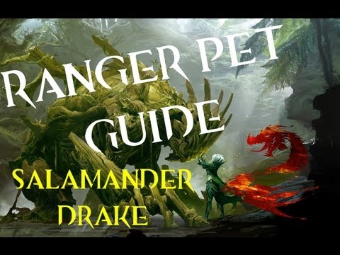 Top Three Guild Wars 2 Ranger Pets | Doovi