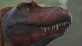 Tyrannosaurus Rex - Ancient Animal