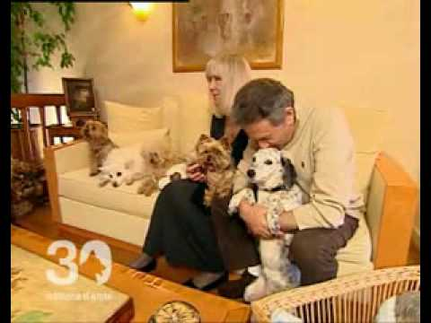 30 millions d 39 amis hommage olga youtube for Animaux nuisibles maison