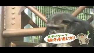 すっかり寒くなってきました。南国育ちの動物たちにとって、日本の寒さ...