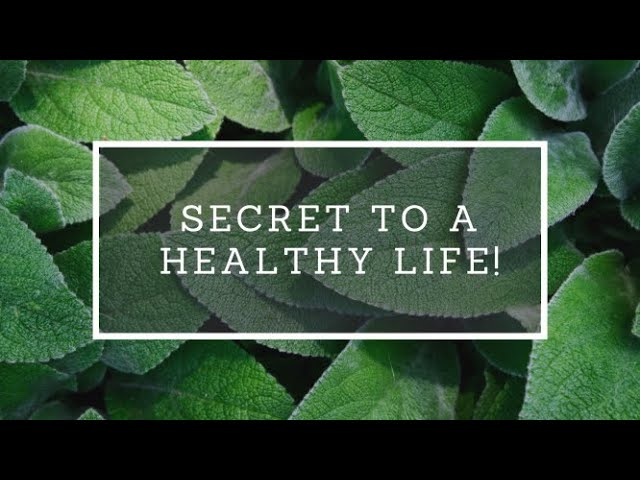 Want to know the secret to a healthy life?