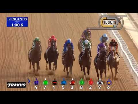 A Closer Look: Florida Derby and UAE Derby Recap (Mendelssohn & Audible)