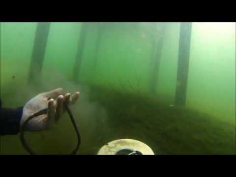 June-8-2013  Diving With The Tesoro Tigershark (metal Detecting)