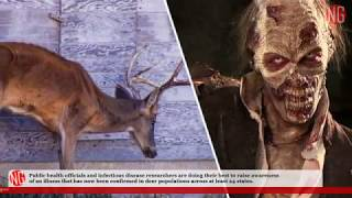 'Deer Zombies' Are Real, Humans Could Be Next