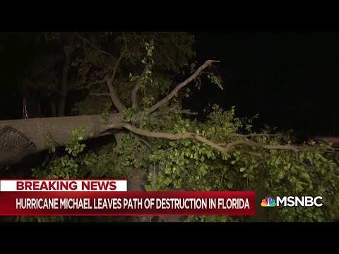 Michael leaves path of destruction in Florida