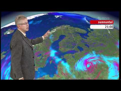 Pekka Pouta ja kärpäsen kakka
