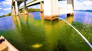 Catching Catfish Under Bridges - Bottom Bumping