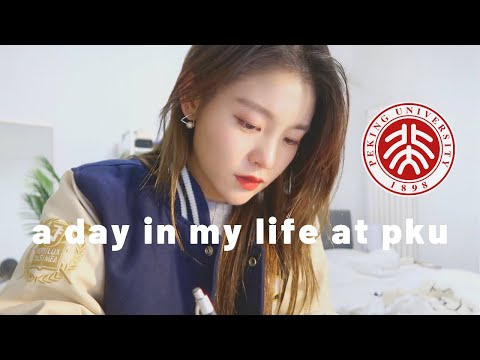 Day In The Life Of A University Student | Exam Week | Peking University | Beijing Vlog