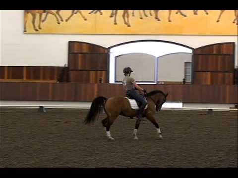 Koryn riding Jackson 2
