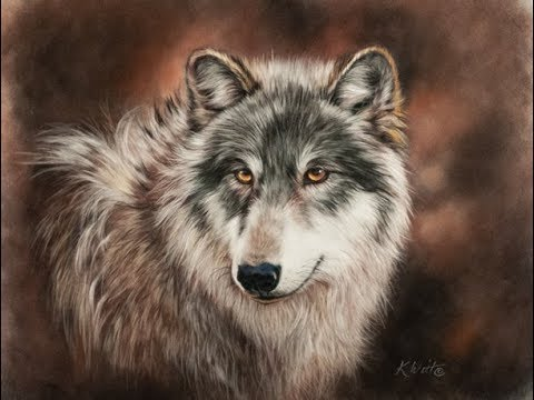 Paint a Wolf in Pastel Part 2