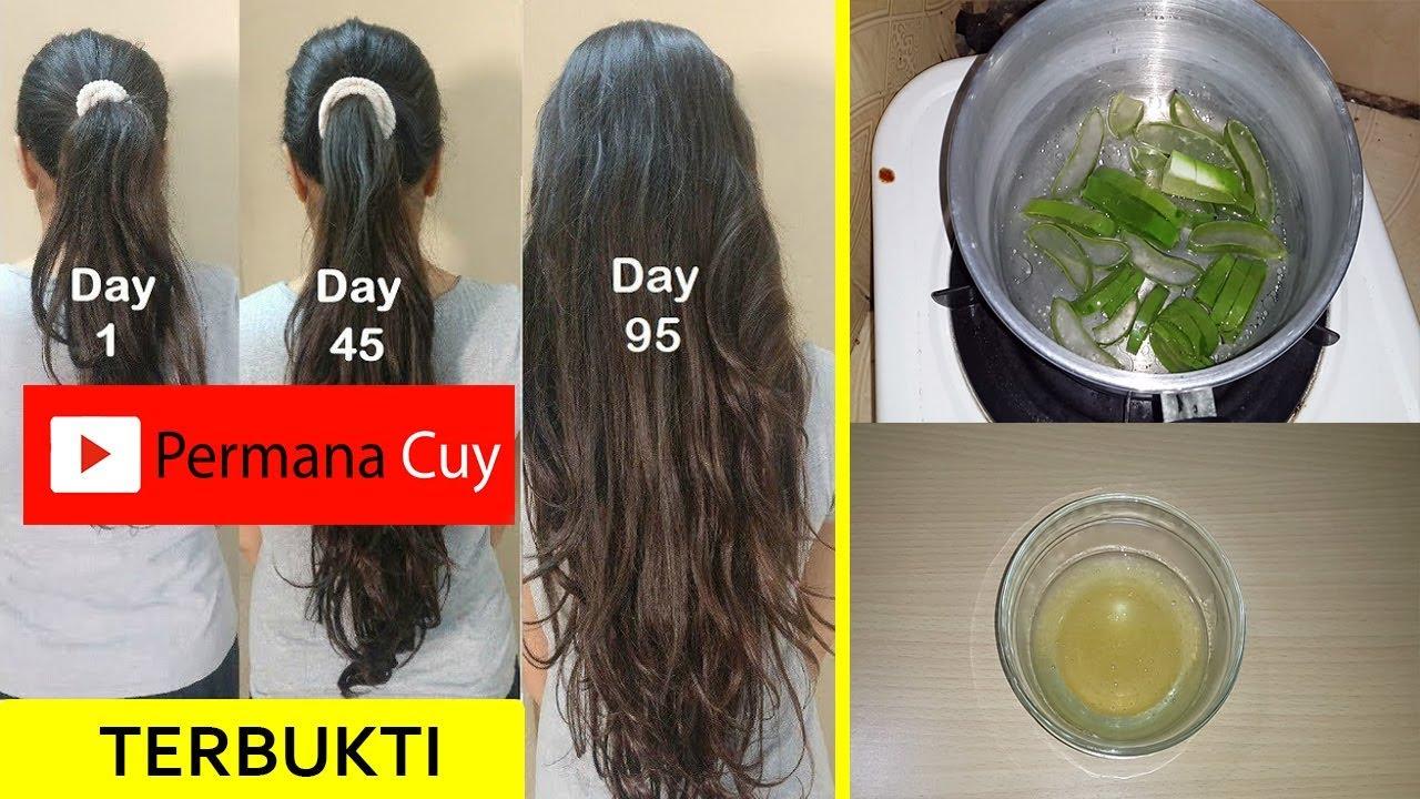 Cara Cepat Menumbuhkan Rambut Dengan Lidah Buaya Youtube