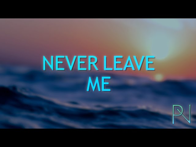 Pete Vagabond - Never Leave Me