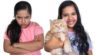 شفا و سوسو يريدوا نفس القطة !! shfa and her twin want same cat