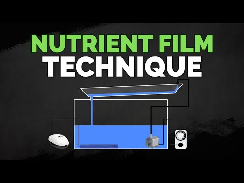 Nutrient Film Technique (NFT) Hydroponics System Tutorial