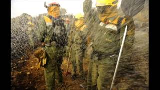 MARCHA NACIONAL BOMBEROS FORESTALES 2014 mpeg2video mpgb