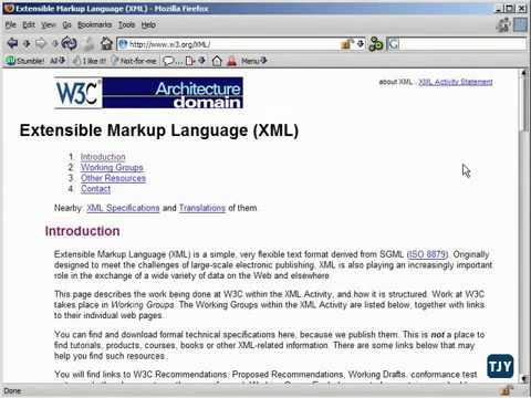 XML Tutorial   7 XML & W3C Standard