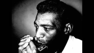 Watch Little Walter Crazy Mixed Up World video