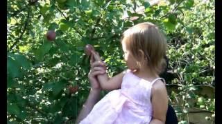 Смотреть клип Виктор Королёв - Я Тону В Твоих Глазах