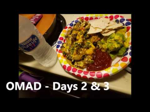 Download OMAD / One Meal A Day - KETO Days 2 & 3