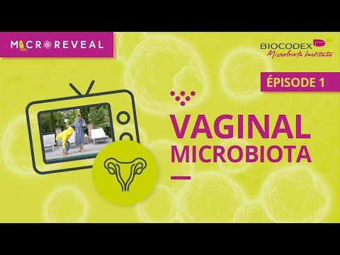 BIOCODEX Microbiota Rendez-vous VF