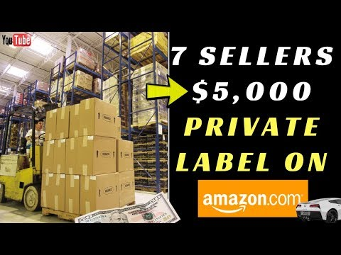 7 Amazon Sellers  Making $5,000 Per Month on Amazon FBA