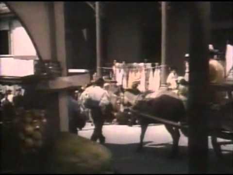 Trailer do filme Brotinho Indócil