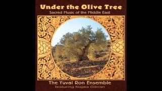 Kol Nidrey by the Yuval Ron Ensemble
