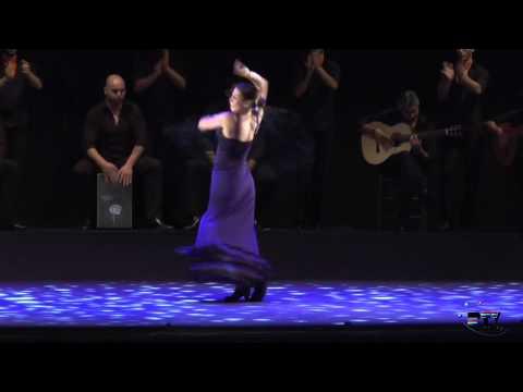 La Noche Blanca del Flamenco 2014