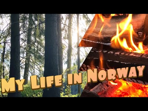 Some of the nicest things about living in Norway from an American perspective. :) - YouTube