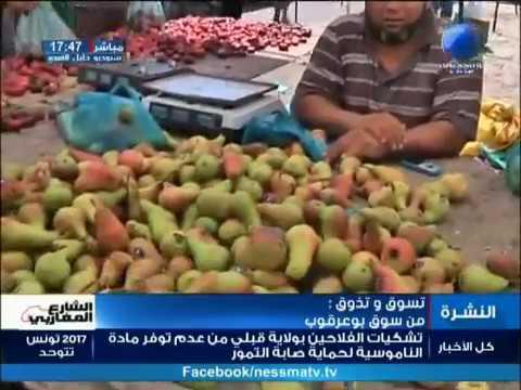 تسوق وتذوق مباشرة من سوق بوعرقوب