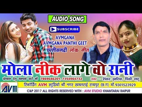 Cg song-Mola nik lage wo rani-Sankar Jhariya, Panik sahu- Chhattisgarhi geet-video 2017