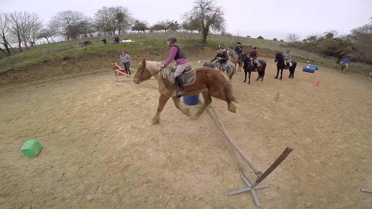 Cours de saut d 39 obstacle premier encha nement pour certains chevaux gopro youtube - Frison saut d obstacle ...