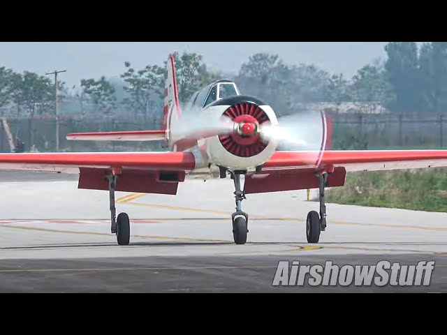 Yak-52 and Yak-50 Formation Aerobatics - Presidential Team ANBO