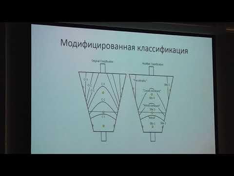 59 Агапов МЮ Атрофический гастрит, кишечная метаплазия и дисплазия взгляд эндоскописта