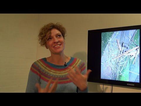 Interjú - MADELINE STILLWELL - Lebontott mozdulatokDismantled acts