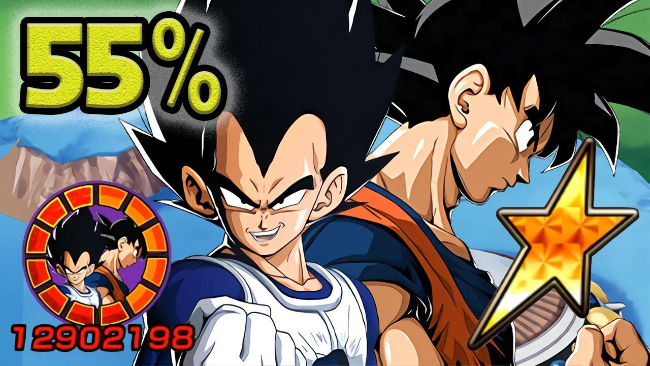 NO DUPES! 55% INT LR VEGETA & GOKU [LEVEL 10 LINKS] Dragon Ball Z Dokkan Battle
