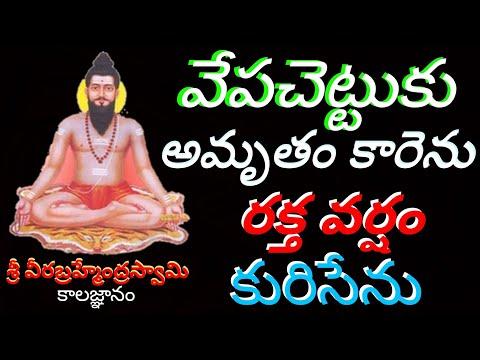 వేపచెట్టుకు అమృతం కారెను రక్తపు వర్షం కురిసేను | Kalagnanam