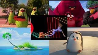Angry Birds vs Madagascar Sparta Remix
