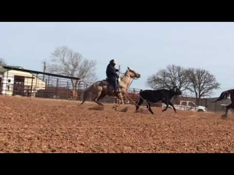 How A Heel Horse Should Enter The Corner And Finish The Run
