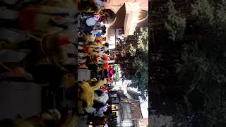 Video Umaria Muharram 2018 download MP3, 3GP, MP4, WEBM, AVI, FLV Oktober 2018