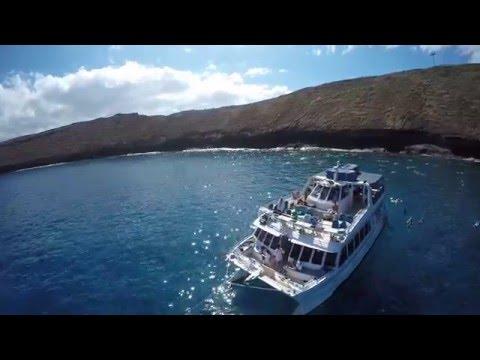 Molokini Snorkeling | Aerial Footage