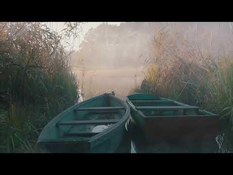 SIGNIFICANCE | FILM | SHELLY CRANE