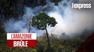 Incendie en Amazonie : le poumon de la terre en danger