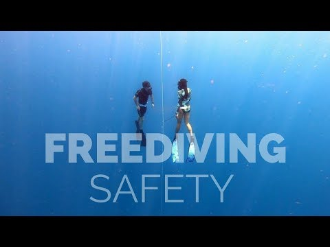 Freediving Safety For Open Water Session
