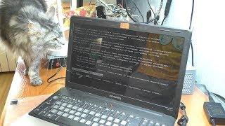 Не загружается Windows / Ноутбук HP Compaq Presario CQ61
