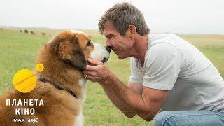 Життя і мета собаки - трейлер (український)