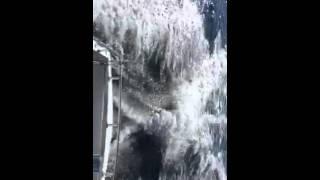 Cruiser diesel Eric running offshore jacksonville