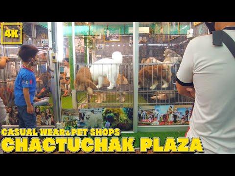 Chatuchak Plaza / ReOpen Gate! Shopping&Pet Zone