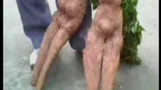 Creepy plant mutation like male and female thumbnail